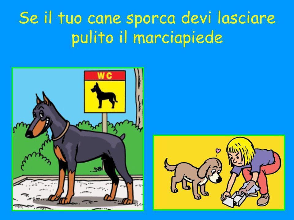 Se il tuo cane sporca devi lasciare pulito il marciapiede