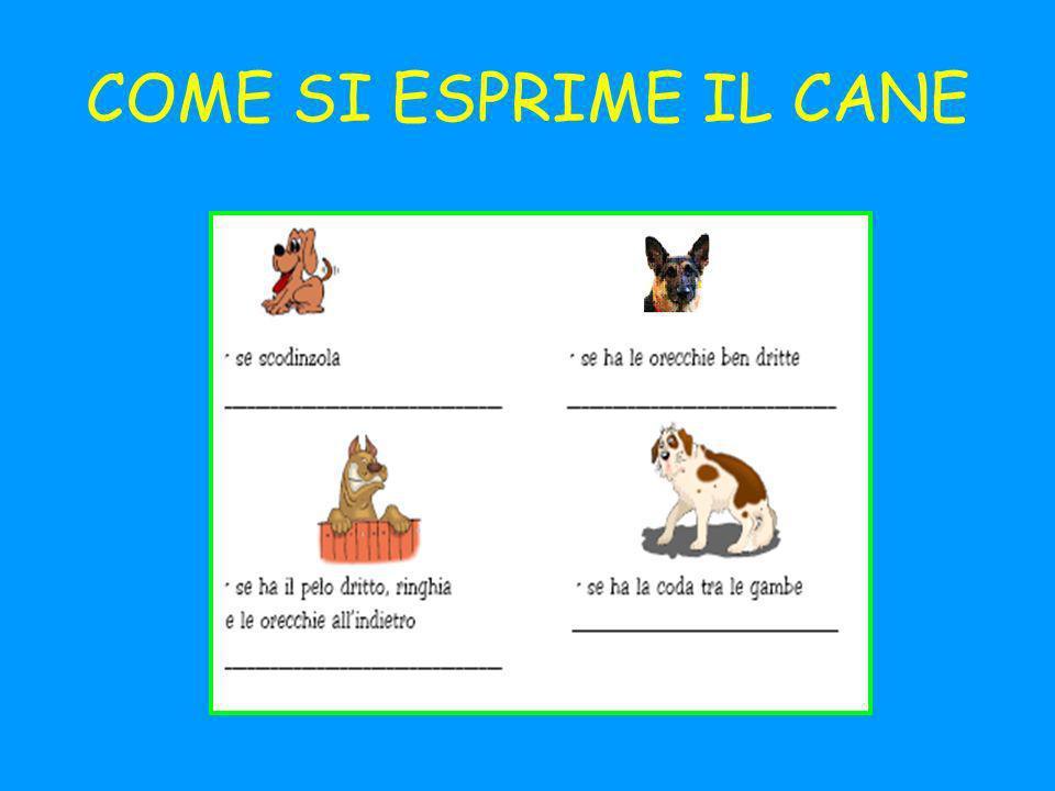 COME SI ESPRIME IL CANE