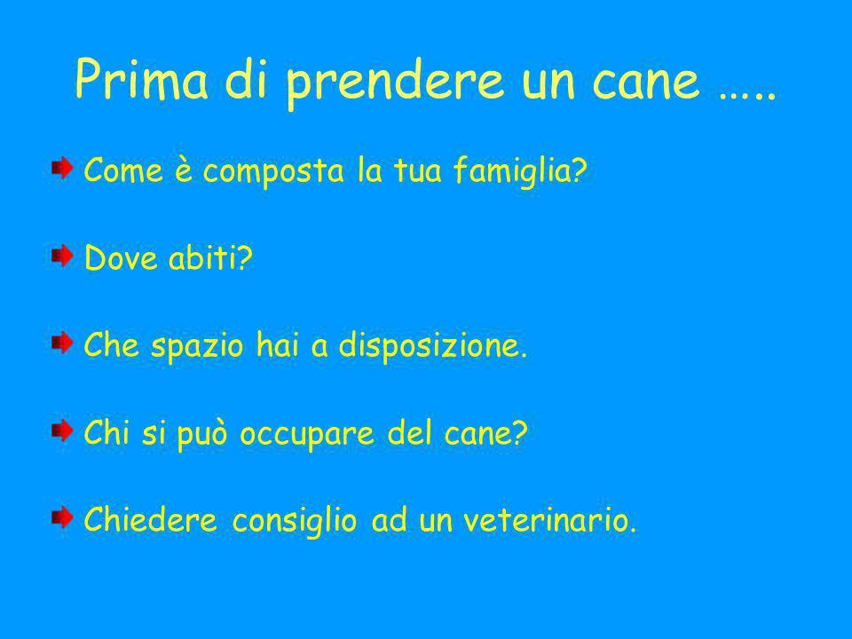 Prima di prendere un cane …..Come è composta la tua famiglia.