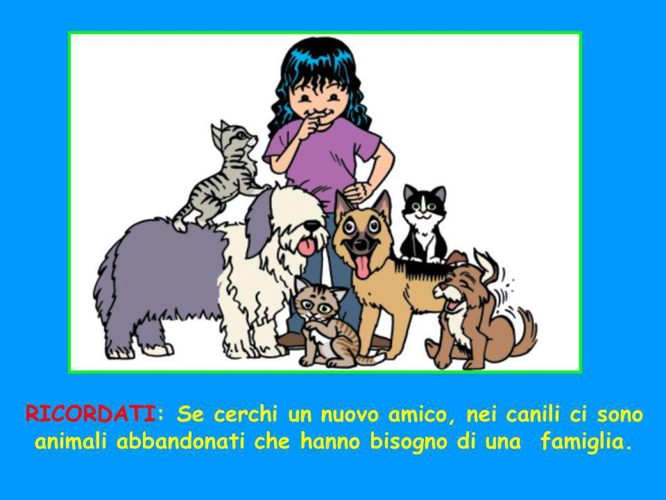 RICORDATI: Se cerchi un nuovo amico, nei canili ci sono animali abbandonati che hanno bisogno di una famiglia.