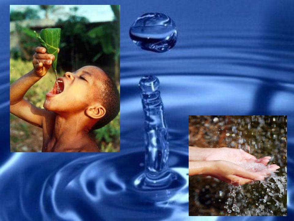 Crisi dell acqua.La crisi dell acqua è reale e grave.