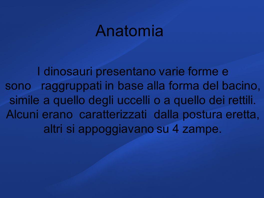 I dinosauri presentano varie forme e sono raggruppati in base alla forma del bacino, simile a quello degli uccelli o a quello dei rettili. Alcuni eran