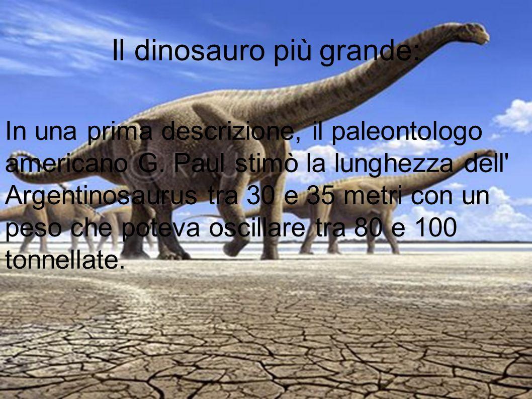 Il dinosauro più grande: In una prima descrizione, il paleontologo americano G. Paul stimò la lunghezza dell' Argentinosaurus tra 30 e 35 metri con un