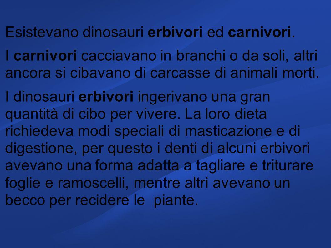 Esistevano dinosauri erbivori ed carnivori. I carnivori cacciavano in branchi o da soli, altri ancora si cibavano di carcasse di animali morti. I dino