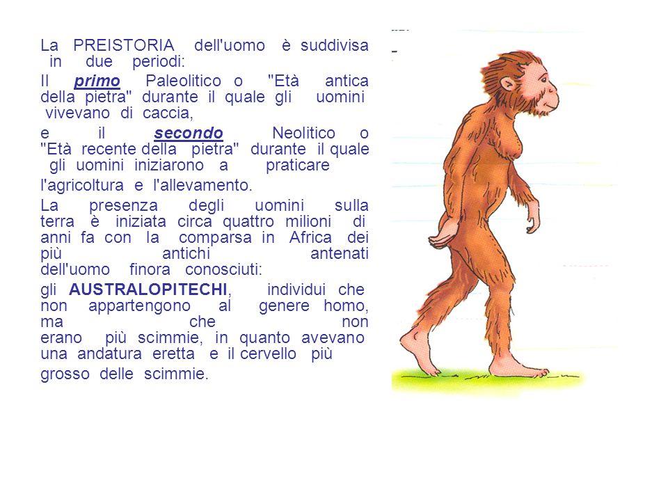 La PREISTORIA dell'uomo è suddivisa in due periodi: Il primo Paleolitico o