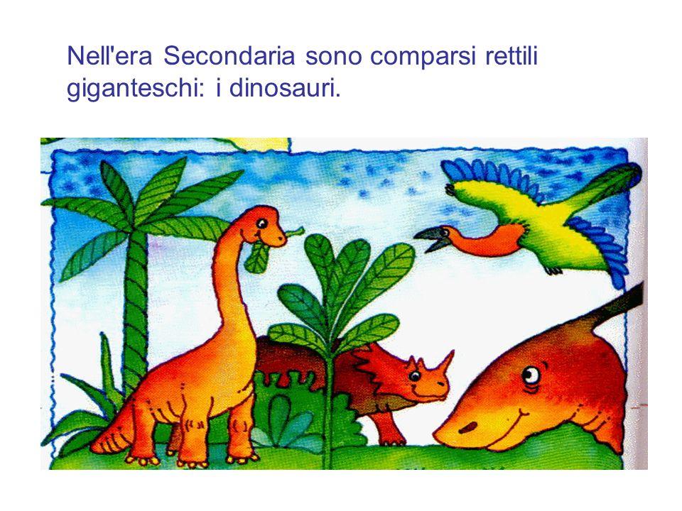 Nell'era Secondaria sono comparsi rettili giganteschi: i dinosauri.