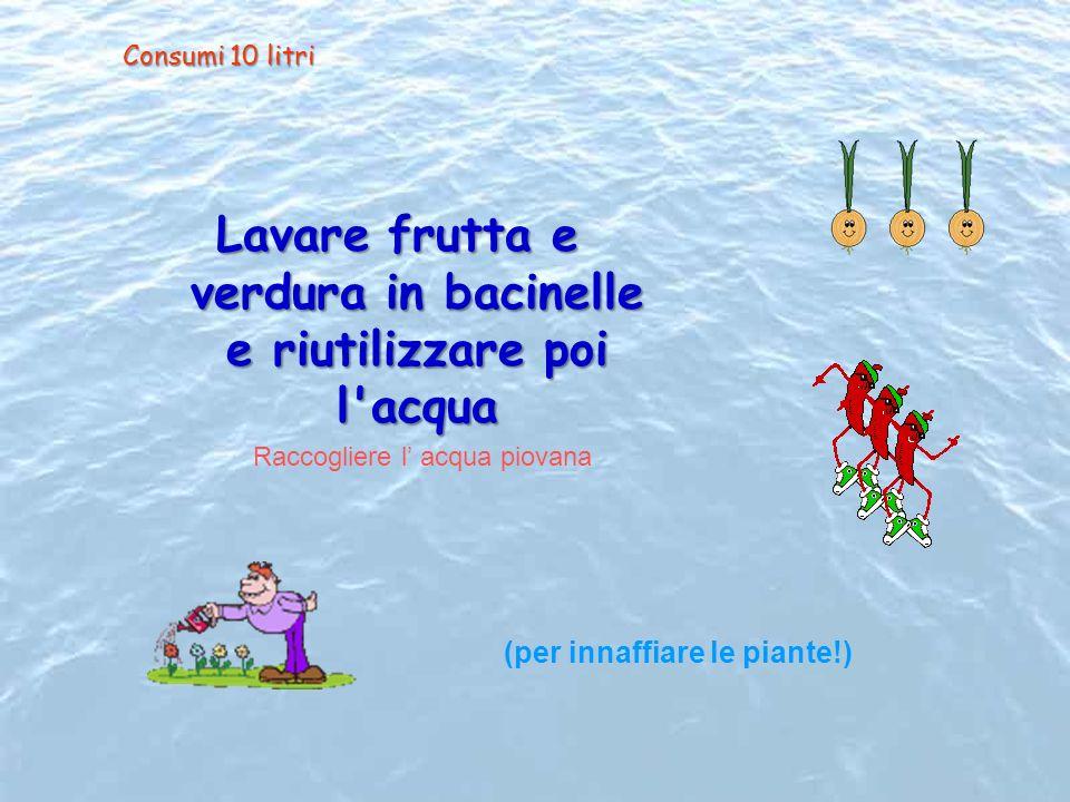Lavare frutta e verdura in bacinelle e riutilizzare poi l'acqua (per innaffiare le piante!) Raccogliere l acqua piovana Consumi 10 litri