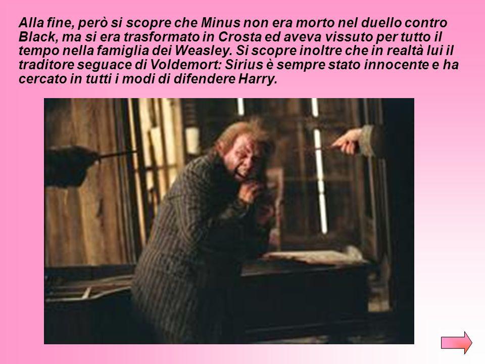 Harry viene a sapere che Sirius Black è evaso dalla prigione di Azkaban e lo sta cercando. Inoltre scopre che suo padre (James Potter), Sirius Black,