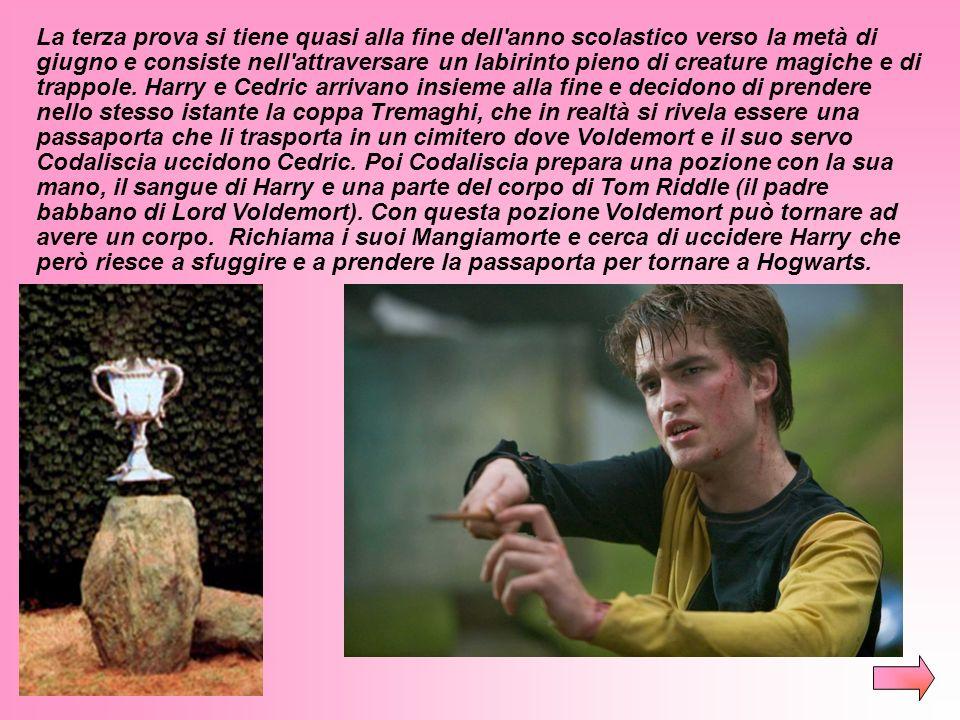 Cedric restituisce il favore a Harry e gli rivela che per capire in cosa consiste la seconda prova bisogna aprire l'uovo sott'acqua. Harry scopre così