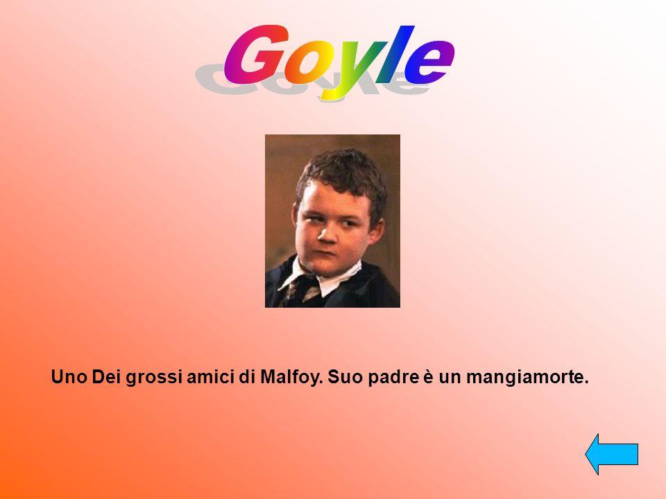 Uno Dei grossi amici di Malfoy. Suo padre è un mangiamorte.