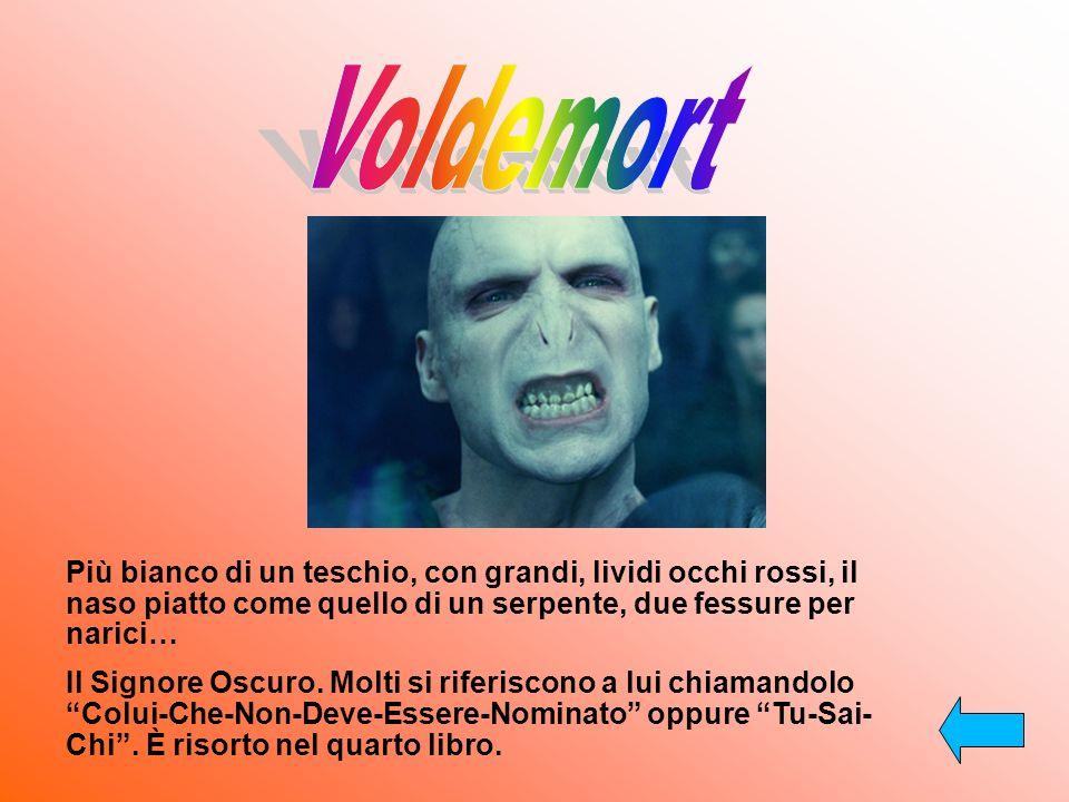 Il servo di Voldemort. Ha finto di venir ucciso da Sirius ed è diventato il topo di Ron. È un animagus.