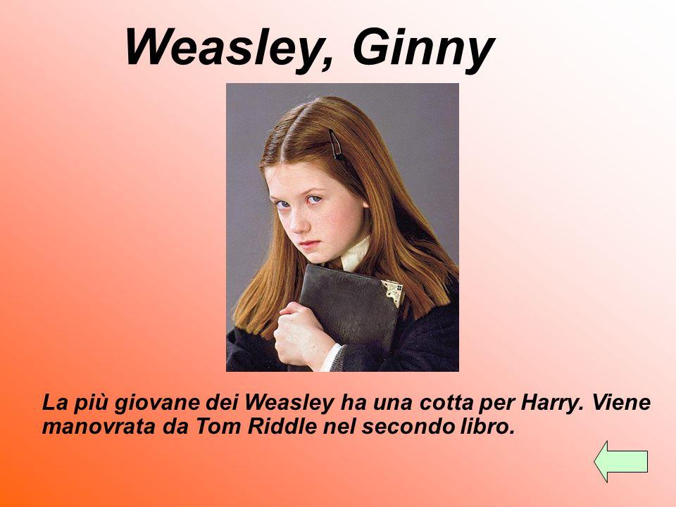 È il padre di Ron. Lavora al Ministero. Weasley, Arthur