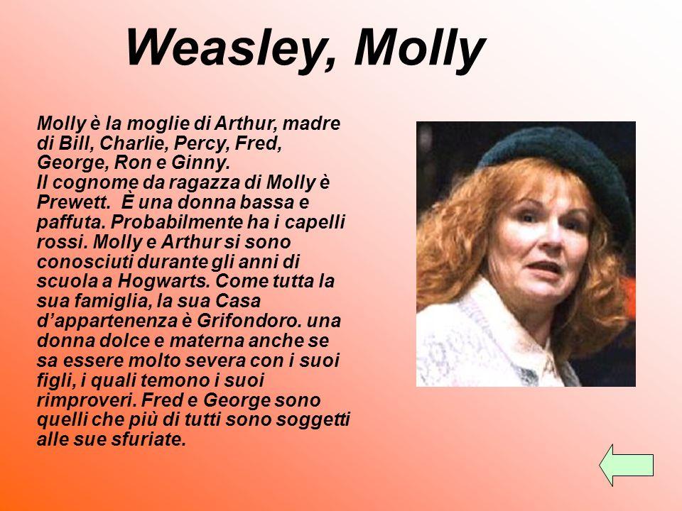 Weasley, Ginny La più giovane dei Weasley ha una cotta per Harry. Viene manovrata da Tom Riddle nel secondo libro.