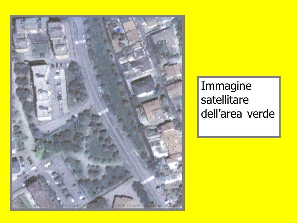 Immagine satellitare dellarea verde