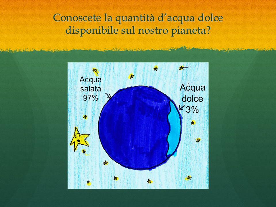 Conoscete la quantità dacqua dolce disponibile sul nostro pianeta? Acqua salata 97% Acqua dolce 3%