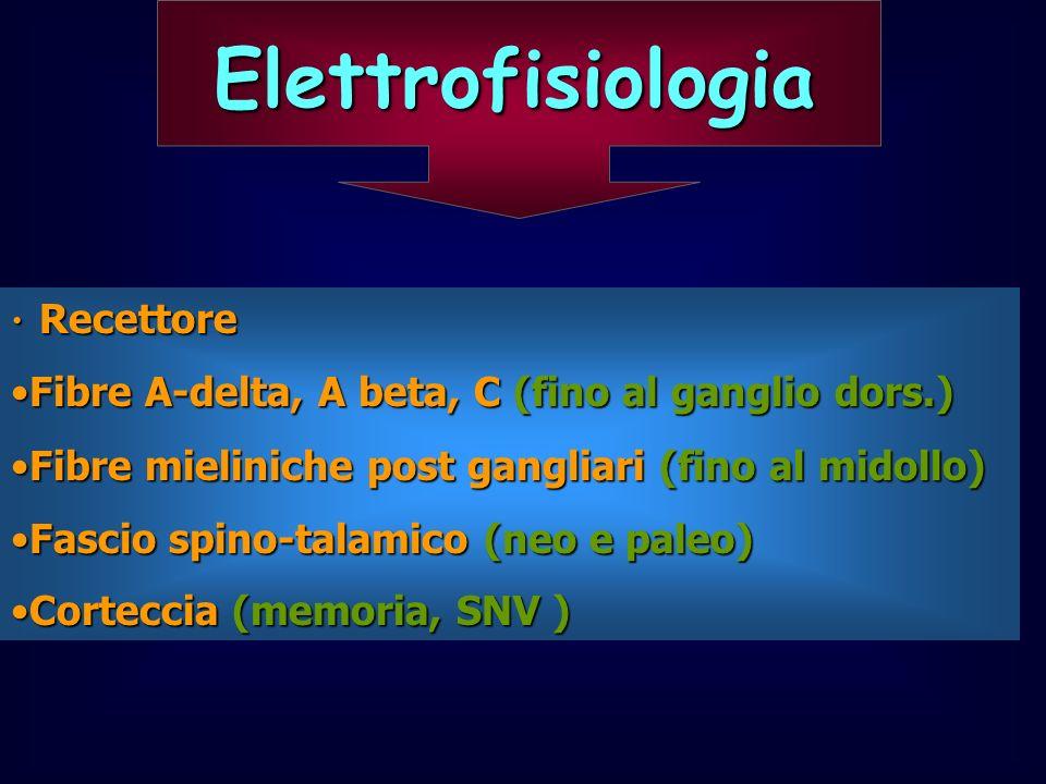 Elettrofisiologia Recettore Recettore Fibre A-delta, A beta, C (fino al ganglio dors.)Fibre A-delta, A beta, C (fino al ganglio dors.) Fibre mielinich