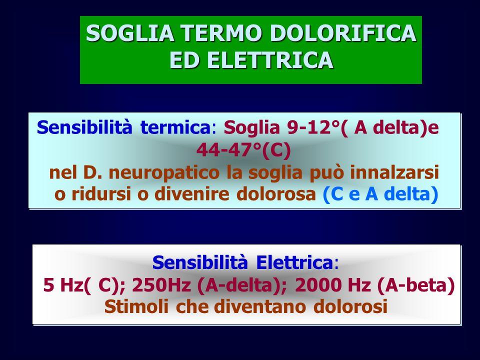 SOGLIA TERMO DOLORIFICA ED ELETTRICA Sensibilità termica: Soglia 9-12°( A delta)e 44-47°(C) nel D. neuropatico la soglia può innalzarsi o ridursi o di