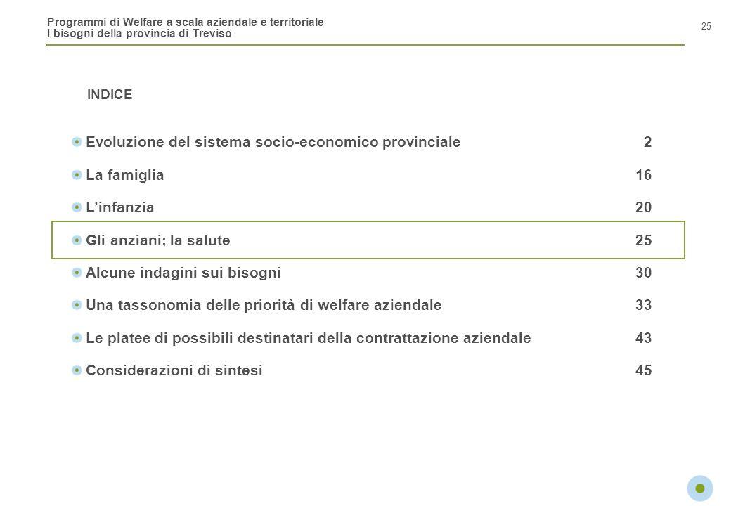 Programmi di Welfare a scala aziendale e territoriale I bisogni della provincia di Treviso INDICE 25 Evoluzione del sistema socio-economico provincial
