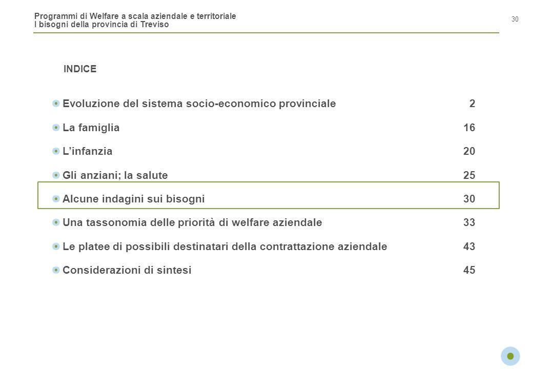 Programmi di Welfare a scala aziendale e territoriale I bisogni della provincia di Treviso INDICE 30 Evoluzione del sistema socio-economico provincial