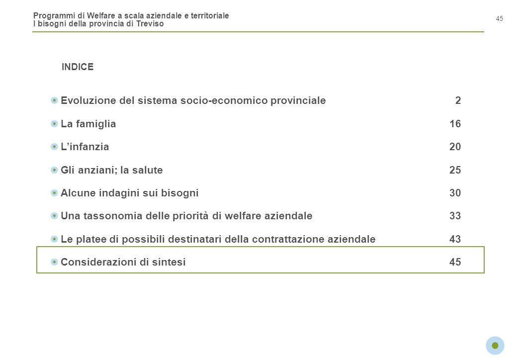 Programmi di Welfare a scala aziendale e territoriale I bisogni della provincia di Treviso INDICE 45 Evoluzione del sistema socio-economico provincial