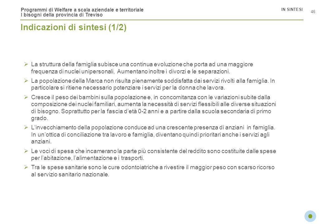 Programmi di Welfare a scala aziendale e territoriale I bisogni della provincia di Treviso 46 IN SINTESI Indicazioni di sintesi (1/2) La struttura del