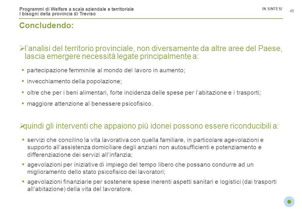 Programmi di Welfare a scala aziendale e territoriale I bisogni della provincia di Treviso lanalisi del territorio provinciale, non diversamente da al