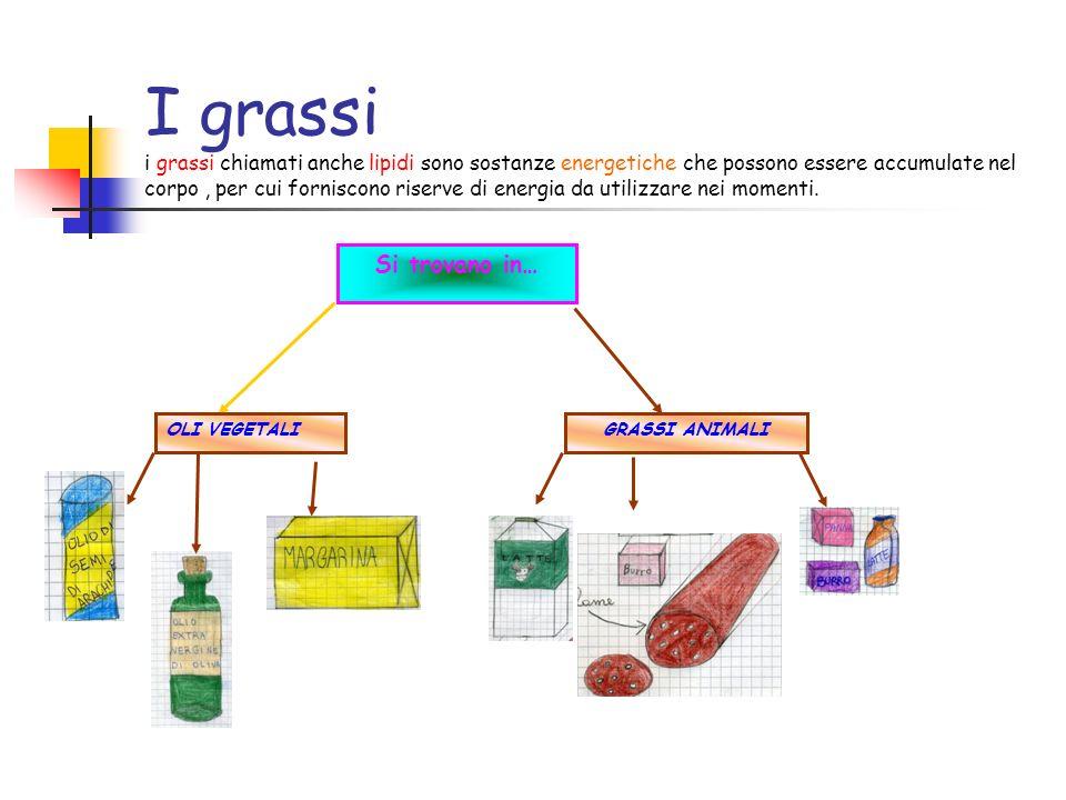 I grassi i grassi chiamati anche lipidi sono sostanze energetiche che possono essere accumulate nel corpo, per cui forniscono riserve di energia da ut