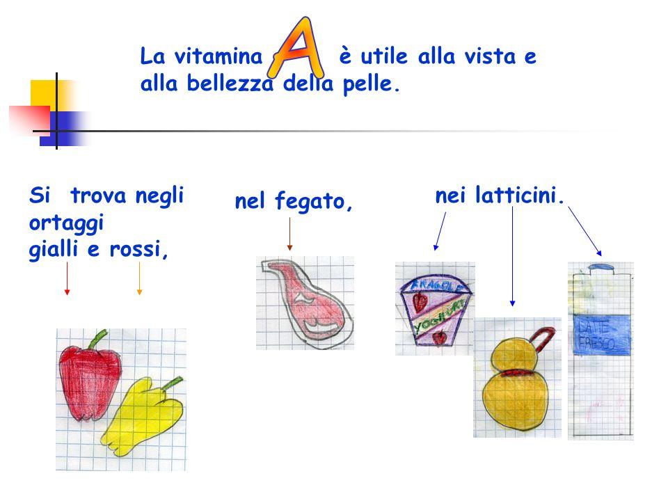 La vitamina è utile alla vista e alla bellezza della pelle. Si trova negli ortaggi gialli e rossi, nel fegato, nei latticini.