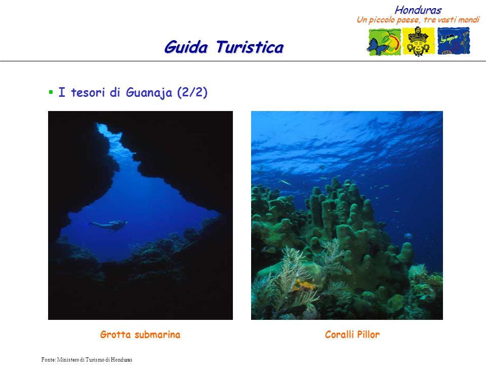 Honduras Un piccolo paese, tre vasti mondi Guida Turistica Fonte: Ministero di Turismo di Honduras I tesori di Guanaja (2/2) Coralli PillorGrotta submarina