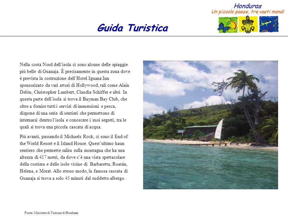 Honduras Un piccolo paese, tre vasti mondi Guida Turistica Fonte: Ministero di Turismo di Honduras Il cammino che attraversa una piccola zona coltivata prima di cominciare a salire la montagna, offre una varietà di frutta nativa, tale come luva del mare, il hovo, il cocco, così come una varietà di fiori tropicali.