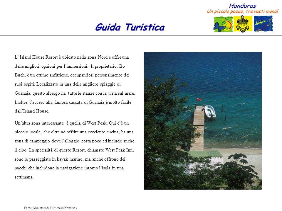 Honduras Un piccolo paese, tre vasti mondi Guida Turistica Fonte: Ministero di Turismo di Honduras I tesori di Guanaja (1/2) I Diver facendo immersioni sui coralliSpugna Marina