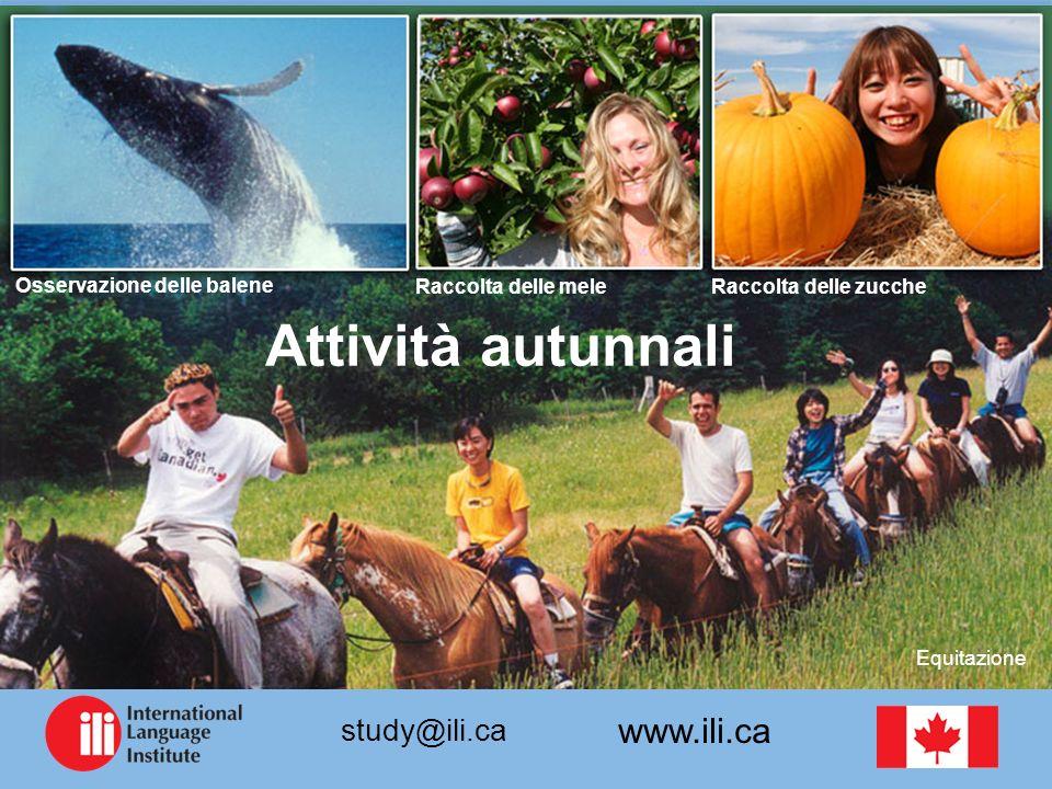 www.ili.ca study@ili.ca Osservazione delle balene Raccolta delle meleRaccolta delle zucche Equitazione Attività autunnali