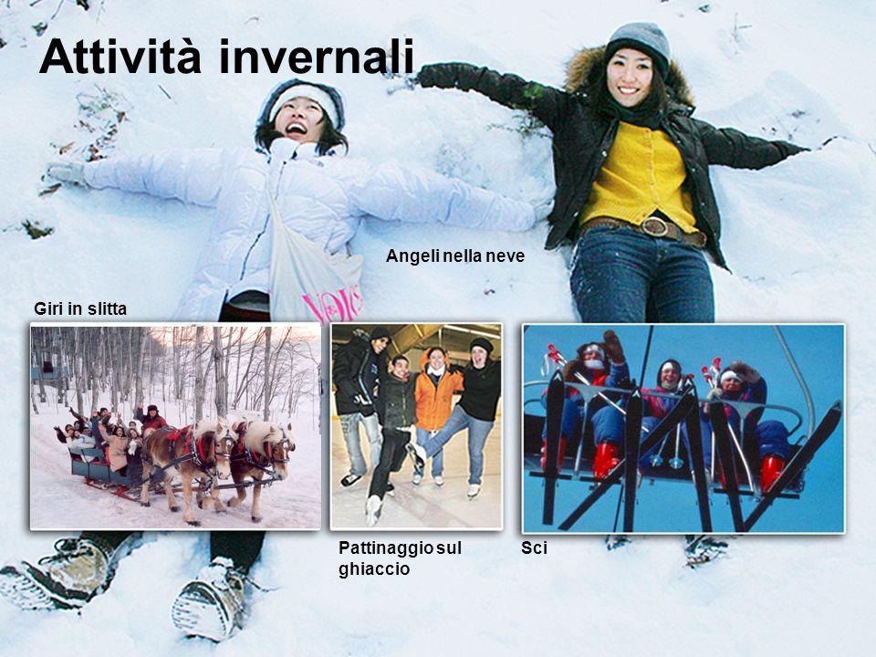 www.ili.ca study@ili.ca Attività invernali Giri in slitta Pattinaggio sul ghiaccio Sci Angeli nella neve