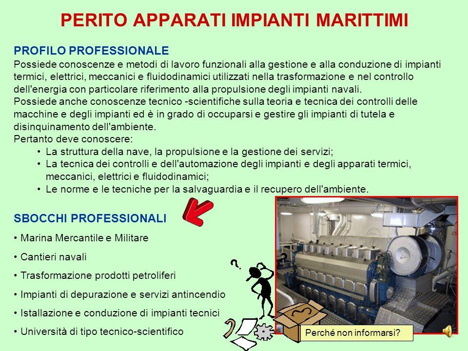 PERITO TRASPORTO MARITTIMO SBOCCHI PROFESSIONALI Marina Mercantile e Militare Società di Navigazione Strutture intermodali e logistica del trasporto A