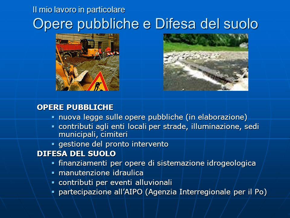 Il mio lavoro in particolare Opere pubbliche e Difesa del suolo OPERE PUBBLICHE nuova legge sulle opere pubbliche (in elaborazione) nuova legge sulle