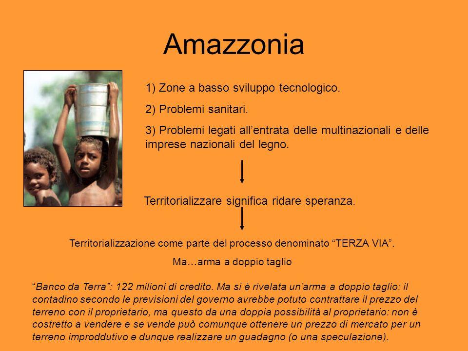 Amazzonia 1) Zone a basso sviluppo tecnologico. 2) Problemi sanitari. 3) Problemi legati allentrata delle multinazionali e delle imprese nazionali del