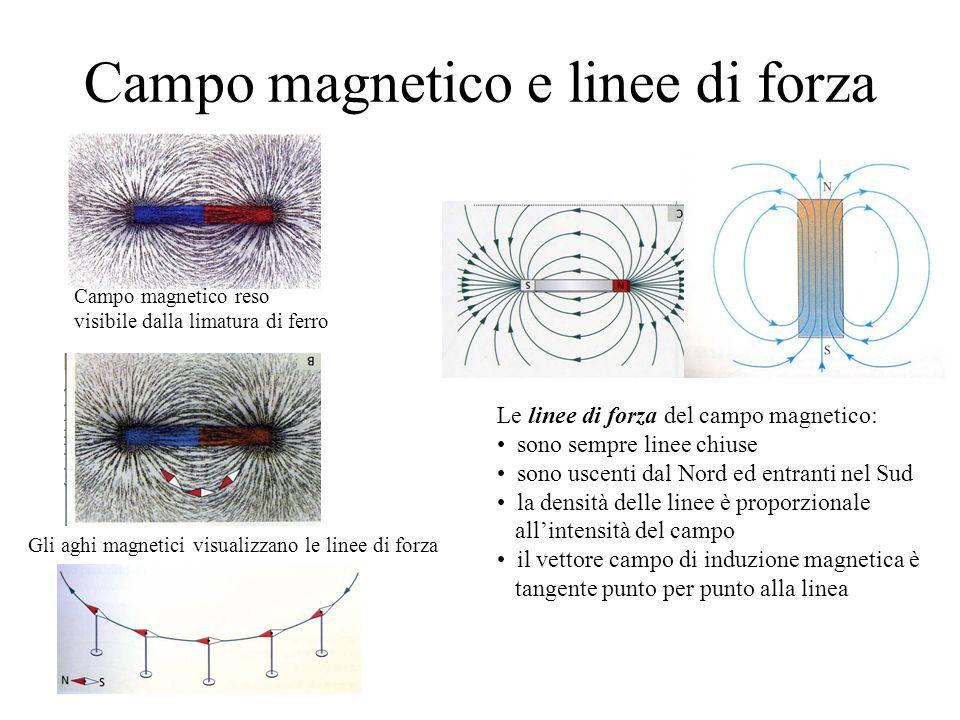 Campo magnetico e linee di forza Campo magnetico reso visibile dalla limatura di ferro Gli aghi magnetici visualizzano le linee di forza Le linee di forza del campo magnetico: sono sempre linee chiuse sono uscenti dal Nord ed entranti nel Sud la densità delle linee è proporzionale allintensità del campo il vettore campo di induzione magnetica è tangente punto per punto alla linea