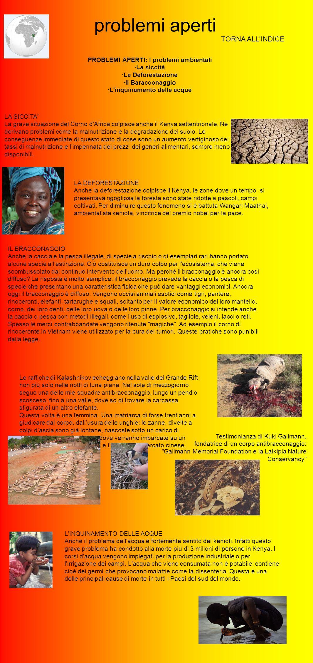 problemi aperti TORNA ALL'INDICE PROBLEMI APERTI: I problemi ambientali ·La siccità ·La Deforestazione ·Il Baracconaggio ·L'inquinamento delle acque L