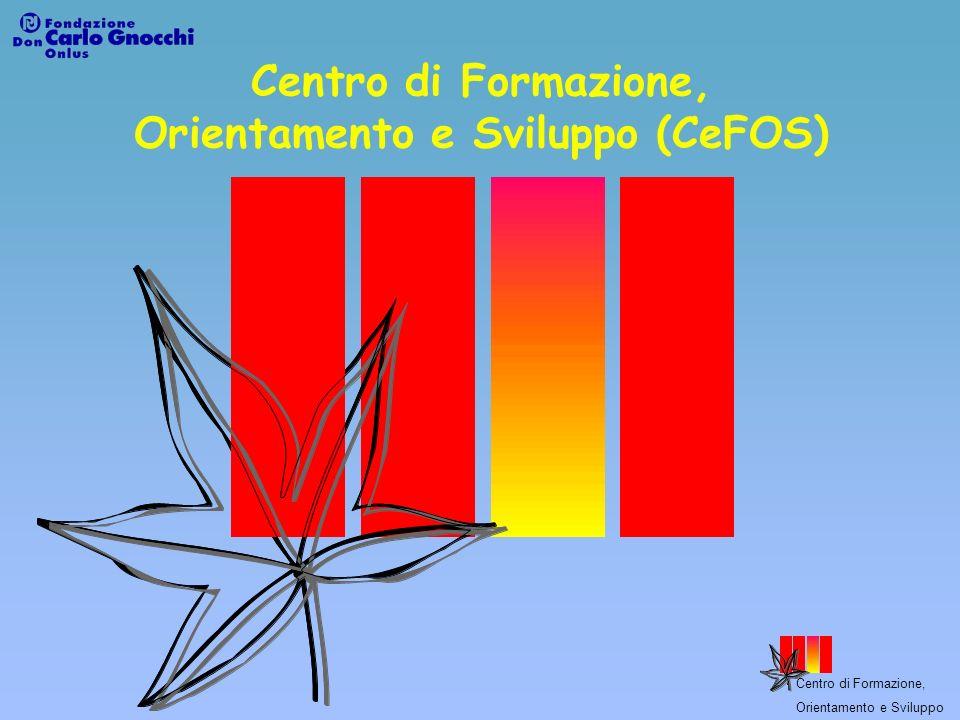 Centro di Formazione, Orientamento e Sviluppo Formazione Continua Disabili Convenzione con il Comune di Milano per iniziative volte allintegrazione lavorativa e sociale di cittadini portatori dhandicap (2003).