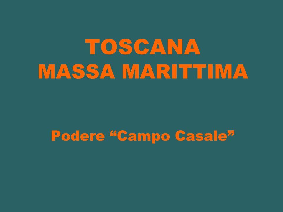 TOSCANA MASSA MARITTIMA Podere Campo Casale