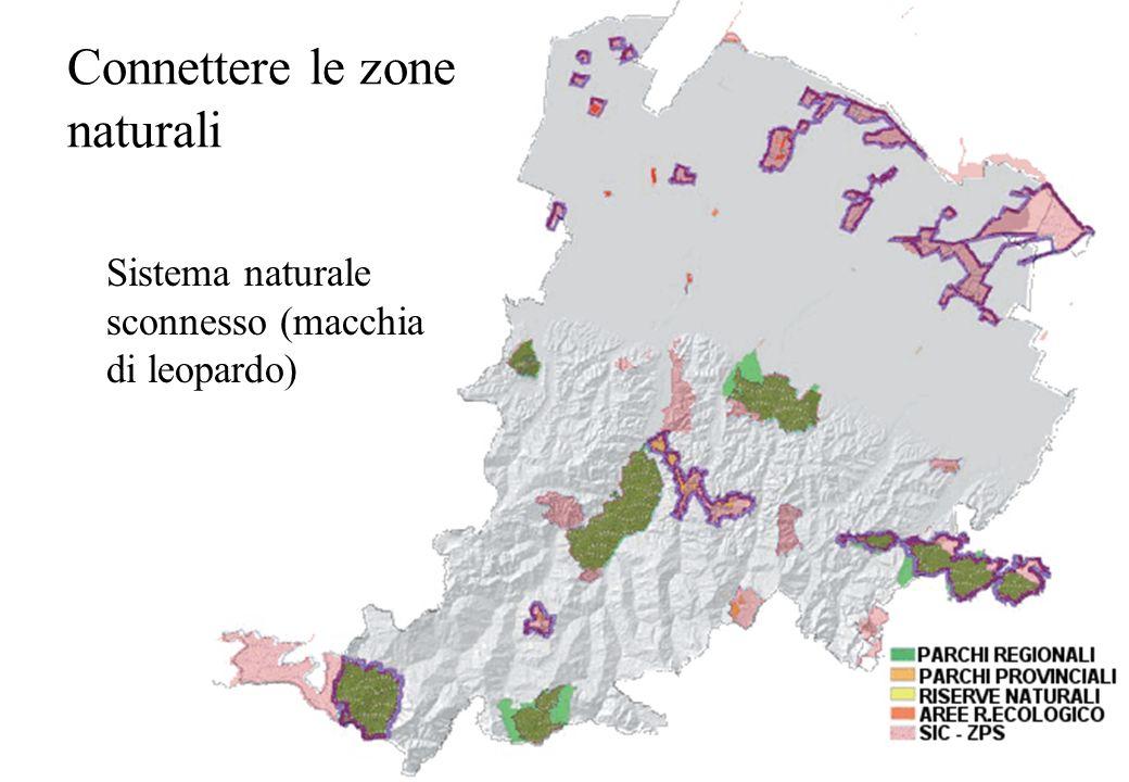 Connettere le zone naturali Sistema naturale sconnesso (macchia di leopardo)