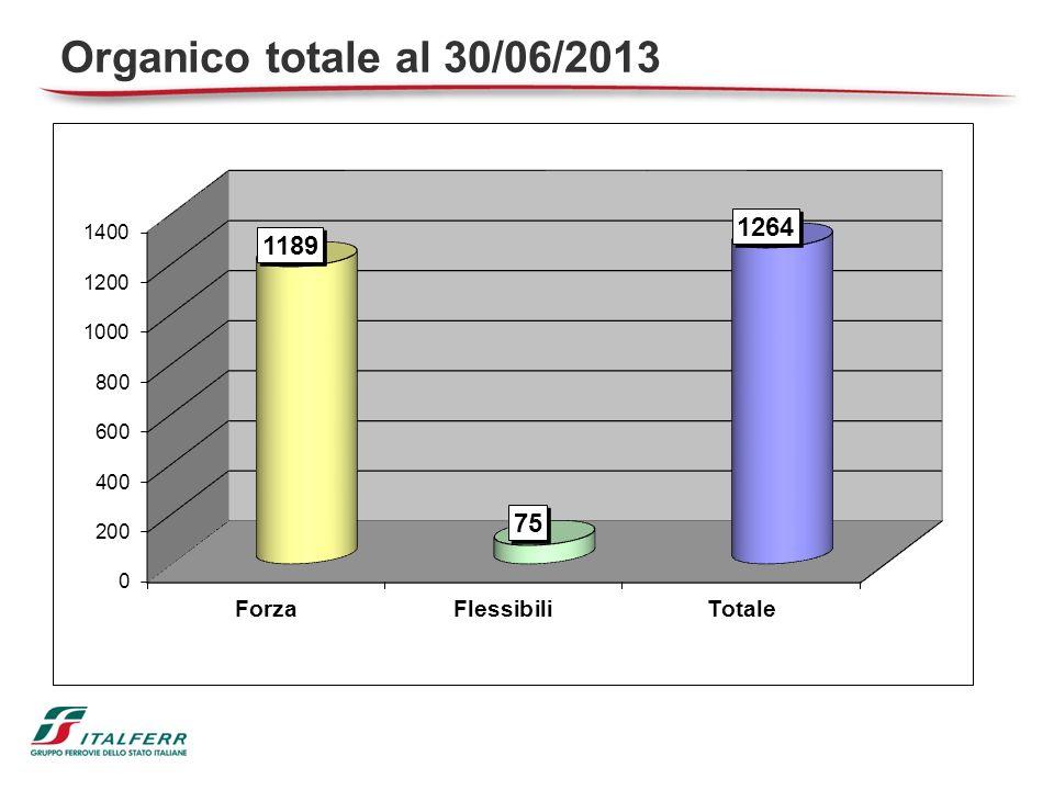 Organico totale al 30/06/2013