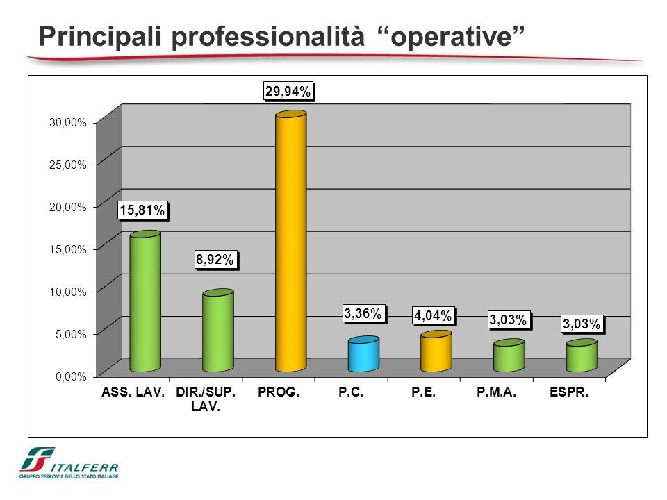 Principali professionalità operative