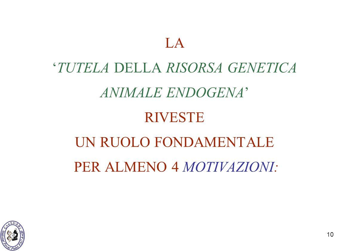 10 LATUTELA DELLA RISORSA GENETICA ANIMALE ENDOGENA RIVESTE UN RUOLO FONDAMENTALE PER ALMENO 4 MOTIVAZIONI: