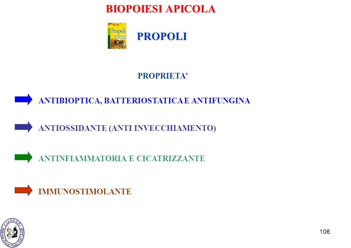 106 ANTIBIOPTICA, BATTERIOSTATICA E ANTIFUNGINA ANTIOSSIDANTE (ANTI INVECCHIAMENTO) ANTINFIAMMATORIA E CICATRIZZANTE IMMUNOSTIMOLANTE PROPRIETA PROPOL