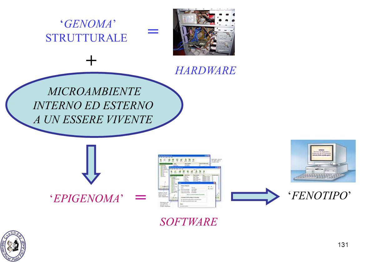 131 GENOMA STRUTTURALE = HARDWARE EPIGENOMA SOFTWARE = FENOTIPO + MICROAMBIENTE INTERNO ED ESTERNO A UN ESSERE VIVENTE