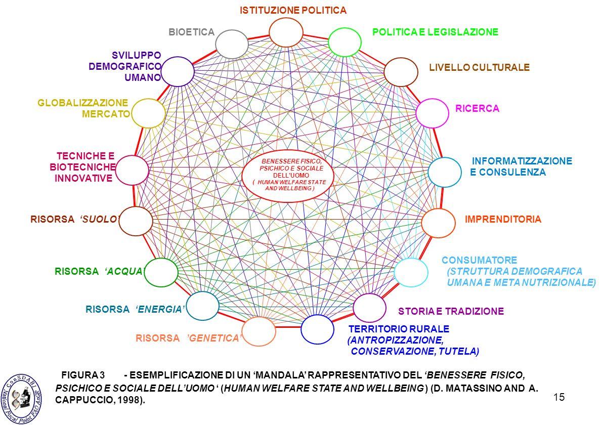 15 ISTITUZIONE POLITICA POLITICA E LEGISLAZIONE TECNICHE E BIOTECNICHE INNOVATIVE INFORMATIZZAZIONE E CONSULENZA CONSUMATORE (STRUTTURA DEMOGRAFICA UM