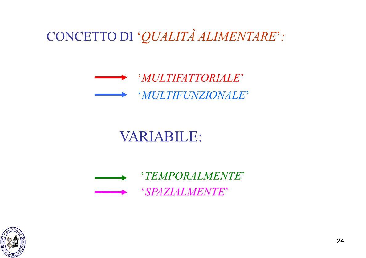 24 CONCETTO DI QUALITÀ ALIMENTARE: SPAZIALMENTE VARIABILE: MULTIFATTORIALE MULTIFUNZIONALE TEMPORALMENTE