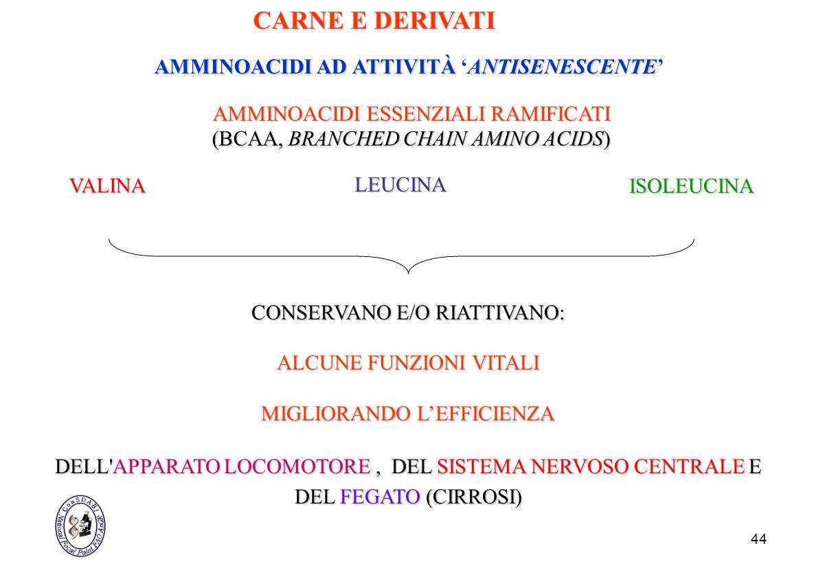44 AMMINOACIDI ESSENZIALI RAMIFICATI (BCAA, BRANCHED CHAIN AMINO ACIDS) VALINA CONSERVANO E/O RIATTIVANO: ALCUNE FUNZIONI VITALI MIGLIORANDO LEFFICIEN