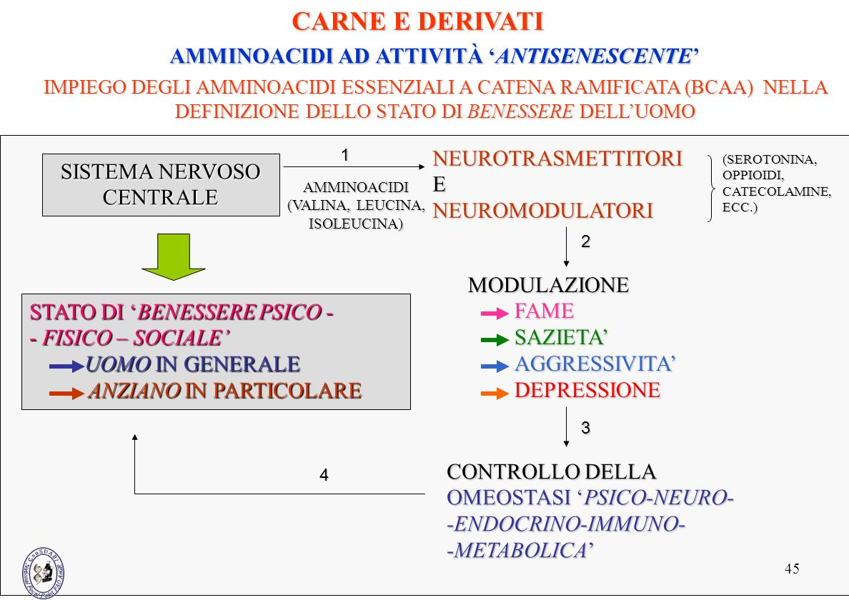 45 SISTEMA NERVOSO CENTRALE AMMINOACIDI (VALINA, LEUCINA, ISOLEUCINA) NEUROTRASMETTITORIENEUROMODULATORI (SEROTONINA,OPPIOIDI, CATECOLAMINE, ECC.) MOD